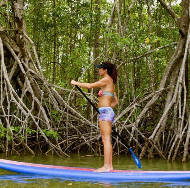 Damas Mangrove Paddle Board