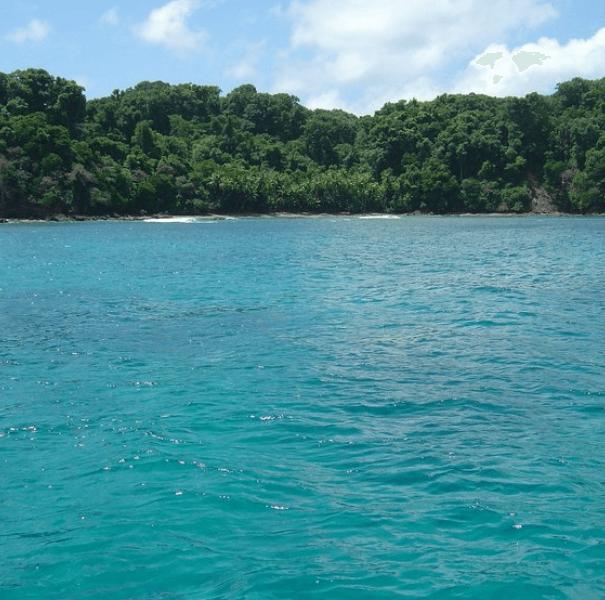 Hiking Corcovado (San Pedrillo) + Snorkeling Caño Island