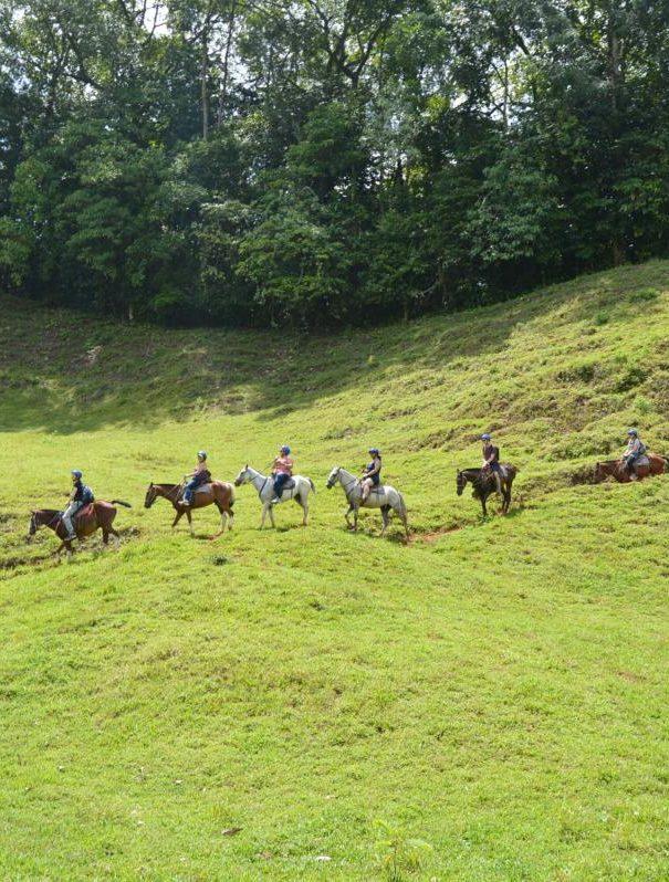 Horseback Riding Rancho Don Juan