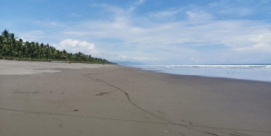 Playa Rey