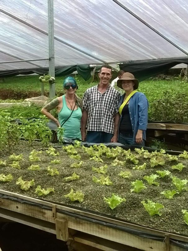 Sustainable local farms