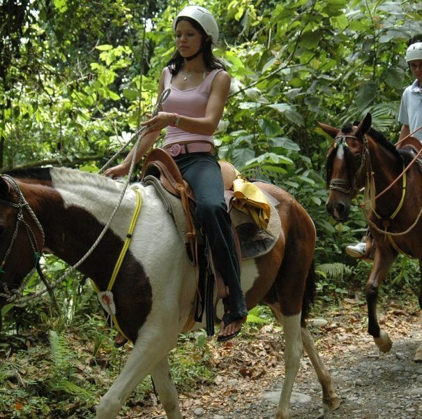 Waterfall Horseback Riding