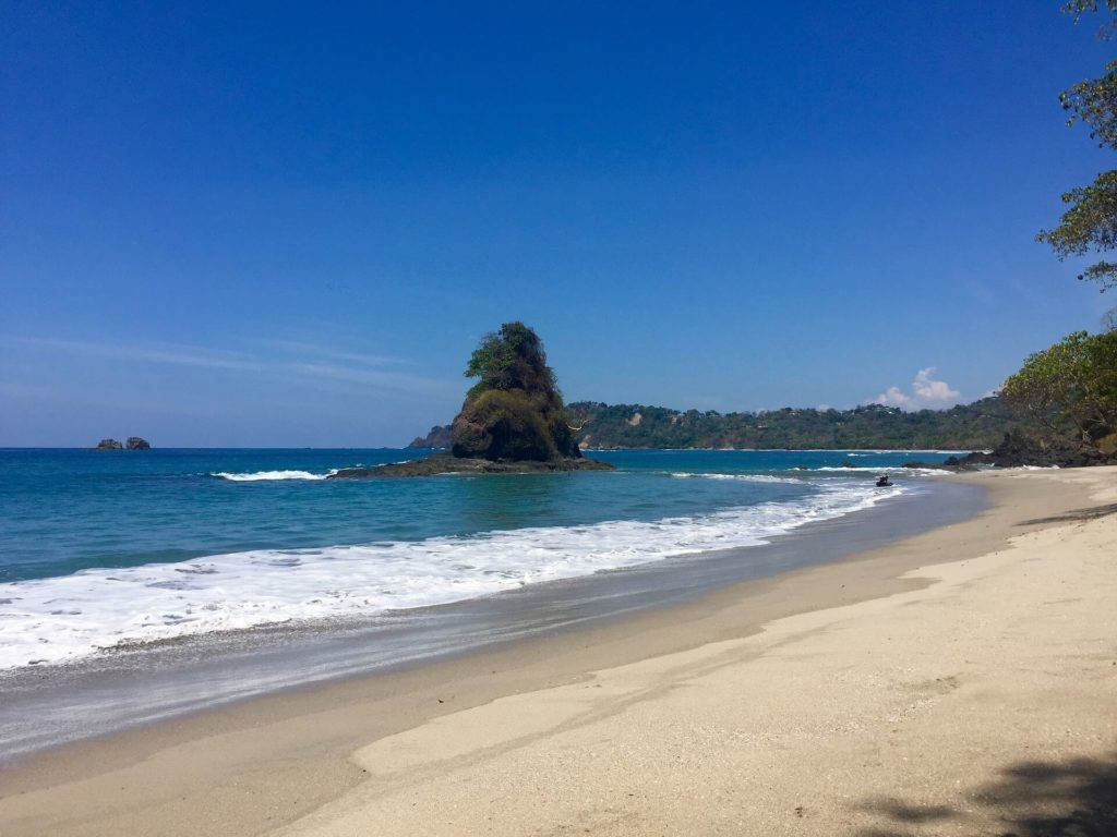 5 reasons you should do a Manuel Antonio Park guided tour